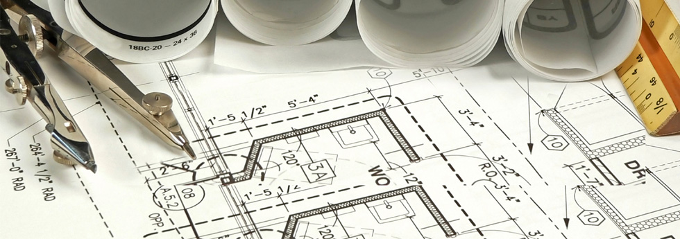 Development of Assets • Realty and Management Services